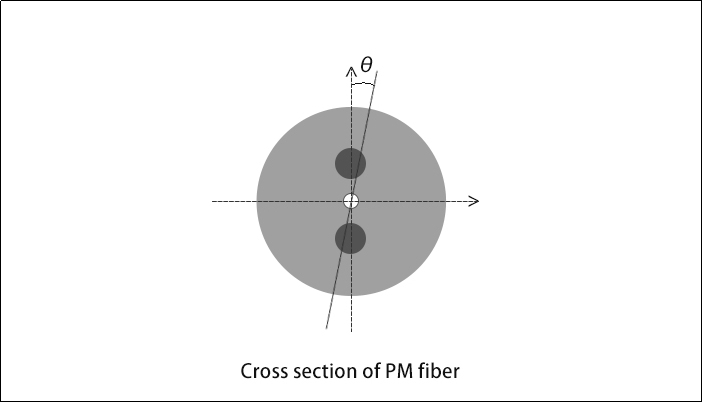 Cross section of PM fiber