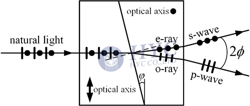 Fig.12 Separation of two orthogonally polarized beams by a Wollaston prism