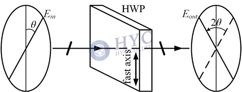 Fig.4 Optical vector rotated by a half waveplate (in the cross section)
