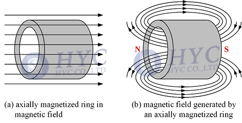 Fig.1 Axially magnetized magnet ring and the magnetic field it generates