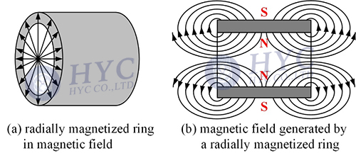 Fig.2 Radially (divergent) magnetized magnet ring and the magnetic field it generates