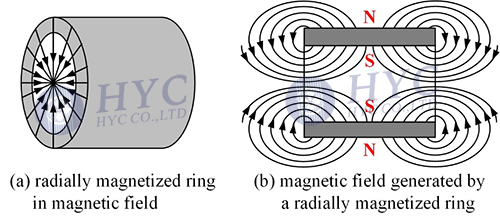 Fig.3 Radially (convergent) magnetized magnet ring and the magnetic field it generates